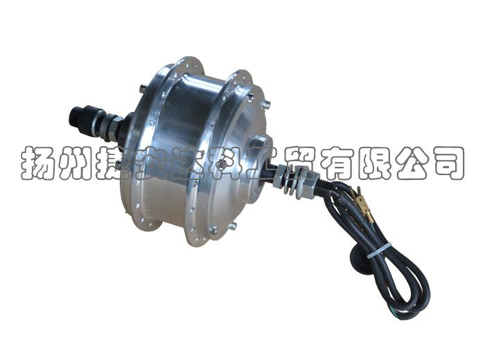 Brushless Rear Hub Motor